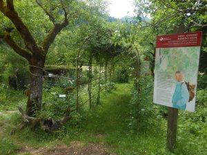 Il giardino di Villa Welsperg